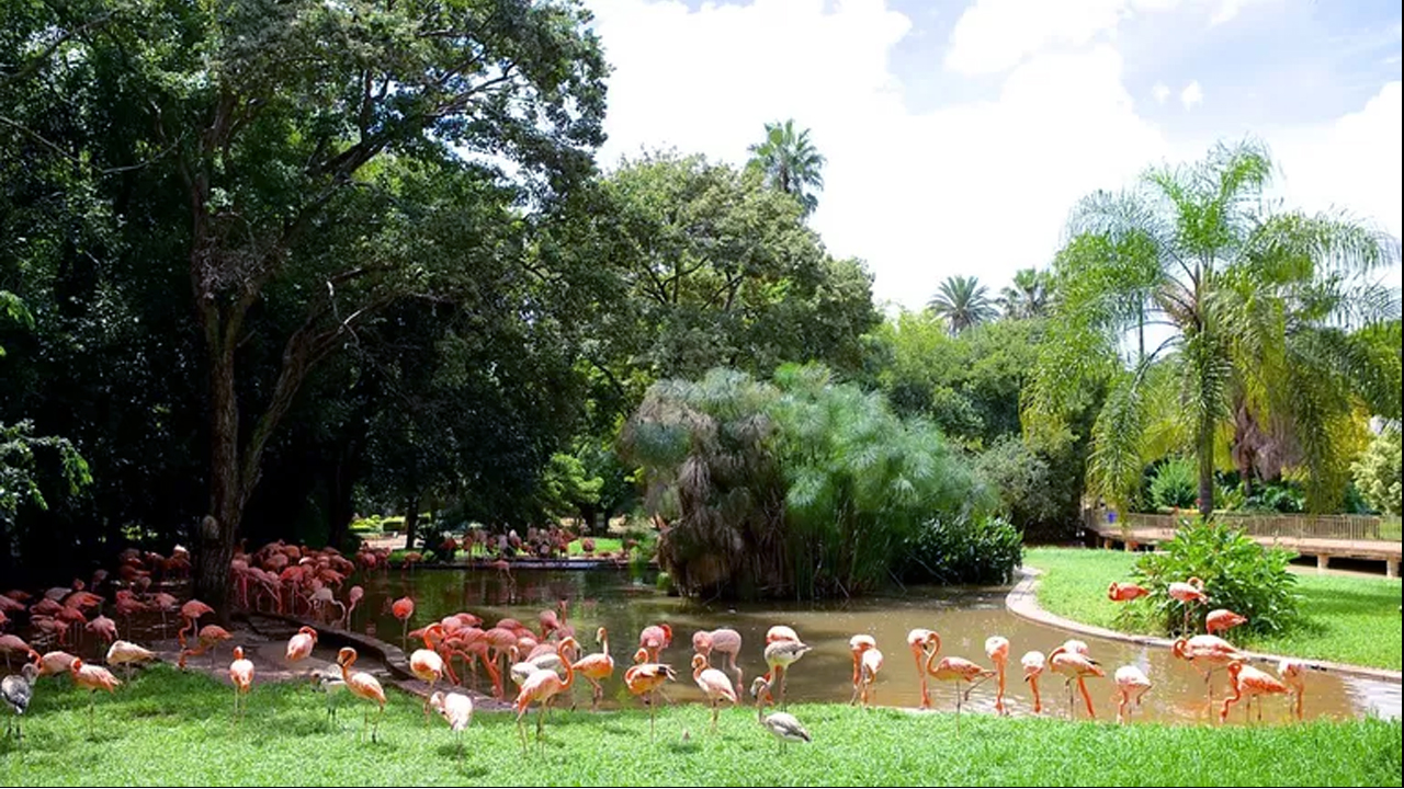 The National Zoological Gardens