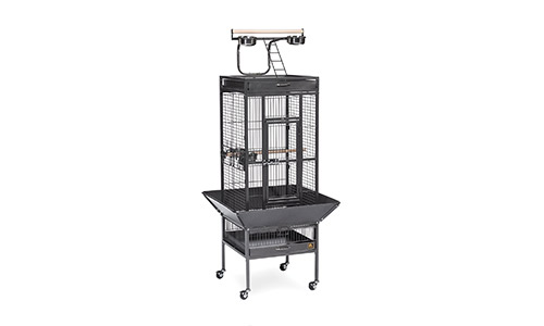 1e97a05be183 Top 5 Best Bird Cages in 2019