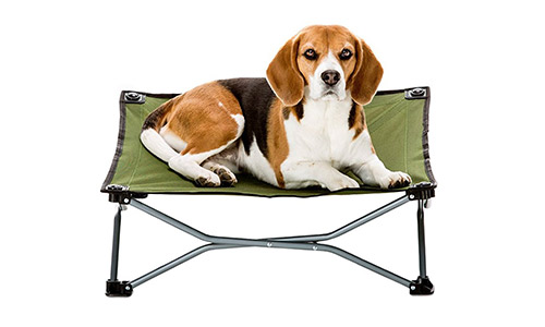 Carlson Elevated Folding Pet Bed