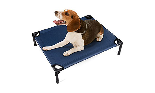 Amzdeal Dog Bed Elevated