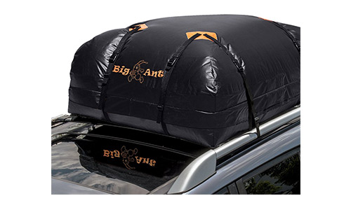 Big Ant Cargo Bag
