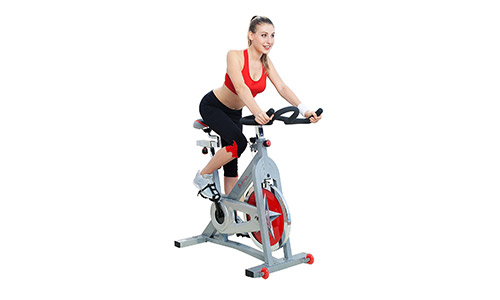 Sunny Health and Fitness Pro -Indoor Cycling Bike.