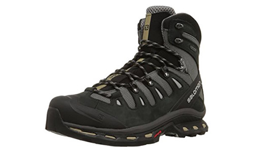 Salomon Men's Quest 4D Hiking Boot