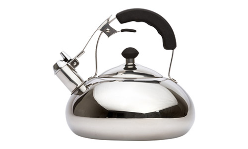 Vanika Stainless Steel Tea Kettle