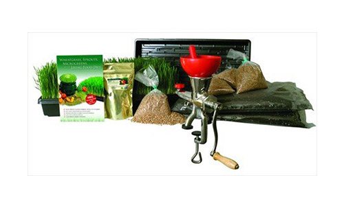 Living Whole Foods Wheatgrass Growing Kit with Manual