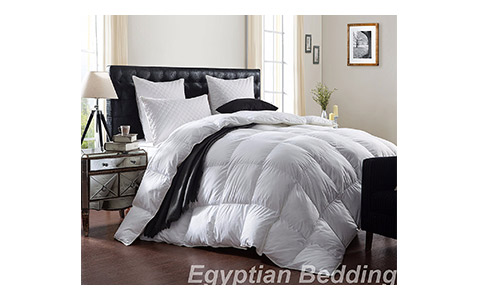 1200 Long Staple Giza Thread Count Comforter from Egyptian Bedding