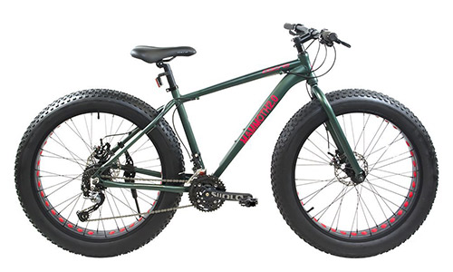 Corsa Alton Mammoth Wheel Alloy Frame Bike