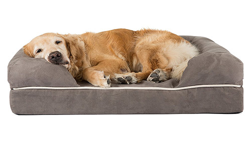Premium Orthopedic Dog Bed by Friends Forever