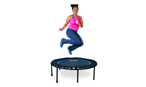Leaps and Bounds Bungee Rebounder