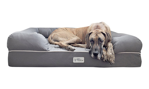 PetFusion presents the Ultimate Dog Lounge