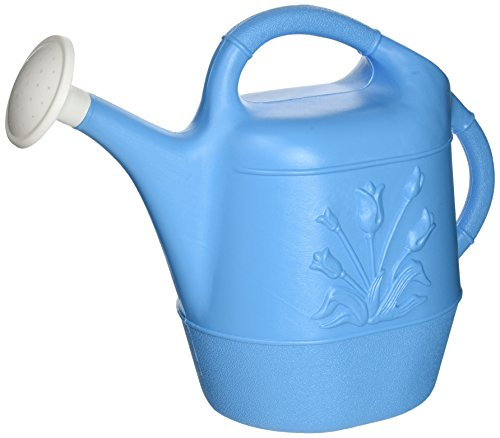 Union 63066 Watering Can with Tulip Design, 2 Gallon