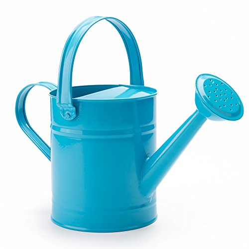 SHANGHAI WORTH Sungmor 1.5 Liter Multi-Color Metal Watering Can