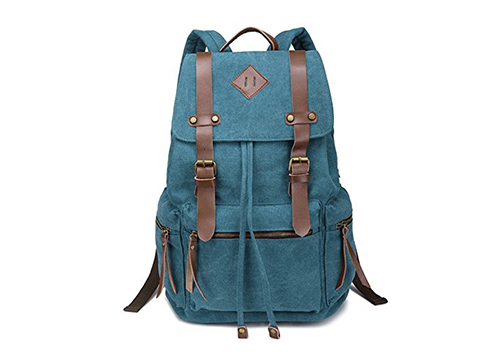 BeautyWill Vintage Canvas Backpack Rucksack for School Travel Hiking: